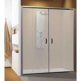Душевая дверь Radaway Premium Plus DWD 160